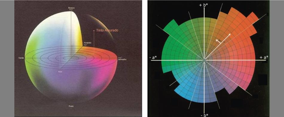 A sinistra (fig. 1): spazio CIELAB del colore. A destra (fig. 2): coordinate cartesiane a* e b* e polari C* e h. (Immagini: AILUN)